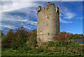 S0860 : Castles of Munster: Ballynahow, Tipperary by Mike Searle