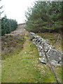 NN9351 : Dry stone wall by Russel Wills