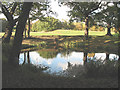 TQ4374 : Eltham Warren golf course: water hazard by Stephen Craven