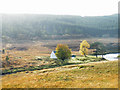 NC8825 : Cottage at Corbuie beside River Helmsdale by Sarah McGuire