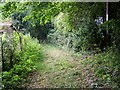 ST7561 : Footpath near Southstoke by Maigheach-gheal