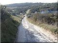 TQ5401 : Lullington Heath - clearing work in progress by Ian Cunliffe