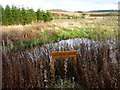 NS7972 : Station Pond near Fannyside by Texas Radio and The Big Beat