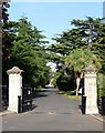 TQ3267 : Cemetery gates and avenue, Queen's Road by Stephen Richards