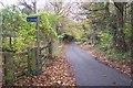 TQ4761 : Footpath on Hookwood Road by David Anstiss