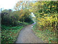 TQ4166 : Footpath, Hayes, Kent by Stacey Harris