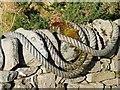 NR7558 : Old rope : Week 48
