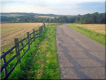 SK4564 : Entrance drive to Hardwick Hall by Trevor Rickard