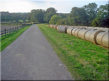 SK4565 : Straw bales by the Hardwick Hall entrance drive by Trevor Rickard