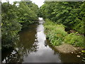 SE0822 : River Calder from Copley Bridge by Alexander P Kapp