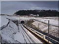 TQ7560 : A Eurostar train heads towards the Blue Bell Hill Tunnel by David Anstiss