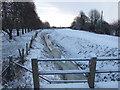 TF4107 : Frozen drain by Richard Humphrey