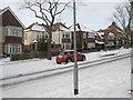 SU6605 : A splash of  colour in Penarth Avenue by Basher Eyre