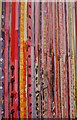 ST1317 : Fence of many colours (1) : Week 4