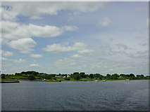 M9560 : Portrunny jetty and shoreline from Lough Ree by Gordon James