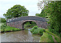 SJ6151 : Stoneley Green Bridge (No 10) near Ravensmoor, Cheshire by Roger  Kidd