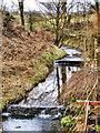 SD7510 : Blackshaw Brook at Red Bridge by David Dixon