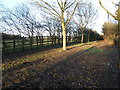 TL1783 : Footpath by the flyover, Sawtry by Michael Trolove