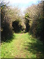 SW8154 : Public footpath alongside the route of the Truro-Newquay Railway by Rod Allday