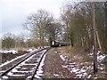 TQ8733 : Railway and train heading to Tenterden Station by David Anstiss