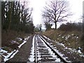 TQ8733 : Kent and East Sussex Railway heading to Rolvenden Station by David Anstiss