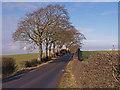 NS4042 : Minor Road, Kilmaurs by wfmillar