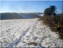 SO2554 : Snow covered fields above the Gladestry Brook valley by Trevor Rickard
