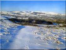 SO2456 : Snow-covered path to Wern Farm by Trevor Rickard