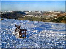 SO2756 : Lone seat on Hergest Ridge by Trevor Rickard