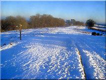 SO2756 : Offa's Dyke Path near Yeld Wood by Trevor Rickard