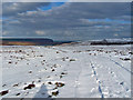 NG3549 : North from the wind farm track by Richard Dorrell