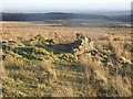 SD6917 : Looking south east from the ruins of Cooper's Farm, Turton Moor by Andrew Gritt