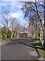 TQ4484 : Avenue of  trees in Barking Park by Adrian Cable
