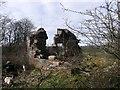 NS7572 : Limekilns ruins by Robert Murray