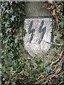 SU6473 : Insignia on the wall by Bill Nicholls