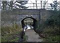 SP0998 : Beneath the railway to Little Bracebridge Pool by Row17