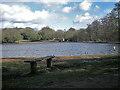 SP1097 : Looking across Blackroot Pool by Row17