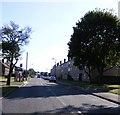 SJ9103 : Primrose Avenue by Gordon Griffiths