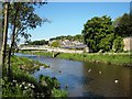 NU0501 : River Coquet at Rothbury by Philip Barker