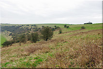 TQ2708 : CRoW access downland by Robin Webster