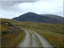 NN4481 : Track to Lochan na h-Earba by Nigel Brown