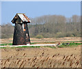 TM4599 : Fritton Marshes drainage mill by Evelyn Simak