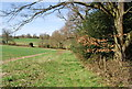 TQ7436 : High Weald Landscape Trail near Glassenbury House by N Chadwick