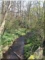 SJ9203 : Waterhead Brook upstream at Moseley Court by John M