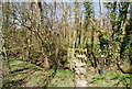 TQ7236 : Footbridge on the High Weald Landscape Trail by N Chadwick