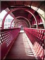 NS7265 : Foot bridge : Week 15