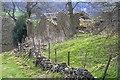 SK1684 : Ruin, Losehill End : Week 15