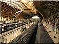 TQ2681 : Paddington Station : Week 15