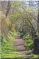 SW7824 : Footpath to Trewarnevas by Trevor Harris