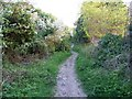 SU1332 : Restricted byway, Old Sarum by Maigheach-gheal